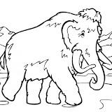 mamut-t9959.jpg