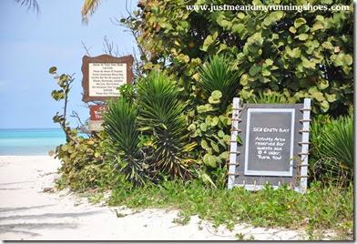 Castaway Cay (2)