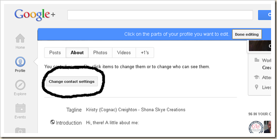 Shona Skye Creations - Enable Replies with Google  Profile 003