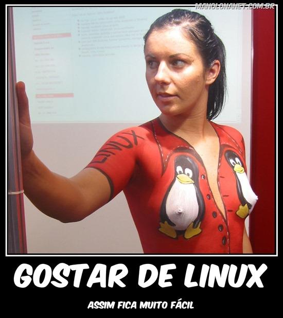 Você Gosta de Linux?