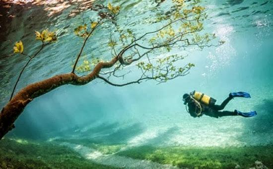 Parque sub-aquático 01