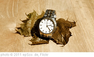 'Slow Time in Wrist Watch on Dry Leaf' photo (c) 2011, epSos .de - license: http://creativecommons.org/licenses/by/2.0/