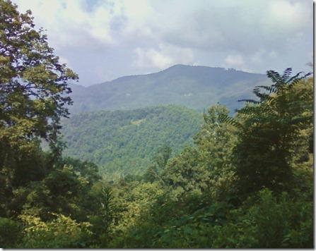 Asheville 41