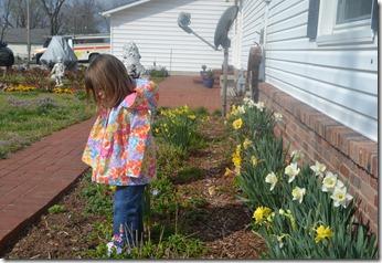 March 15 2012 Mimi's Garden 001