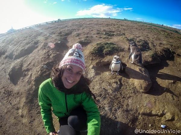 Puerto-Natales-Punta-Arenas-Visitas-imprescindibles-unaideaunviaje--19.jpg