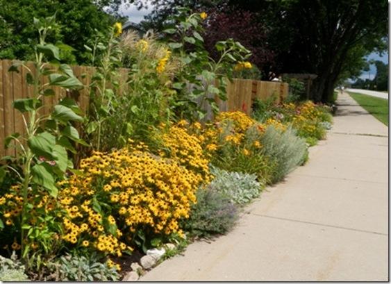 Shawna Coronado's Street Garden