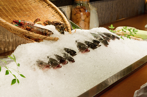 Fresh fish on ice, waiting to be served