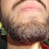 D2T3: Facial Hair