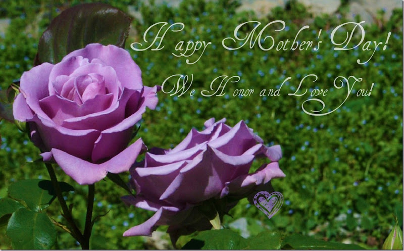 Happy Mothers Day! ROSES, Purple-Lavender