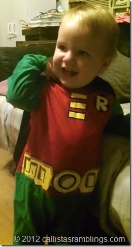Robin Costume from Batman and Robin Toddler Size