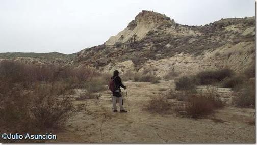 Rambla del Vinalopó con el poblado de Caramoro al fondo - Elche