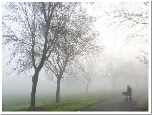 121211_fog_07