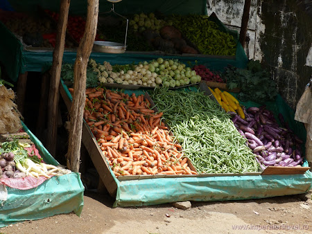 20. vegetale de inaltime.JPG