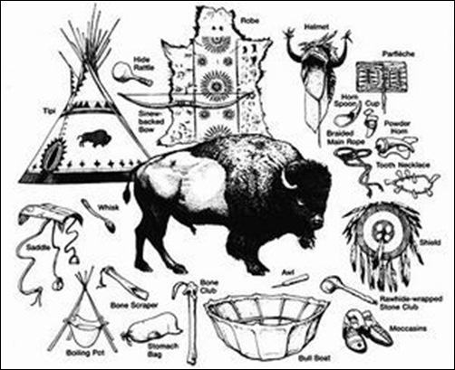 Le massacre des bisons en Amérique-13