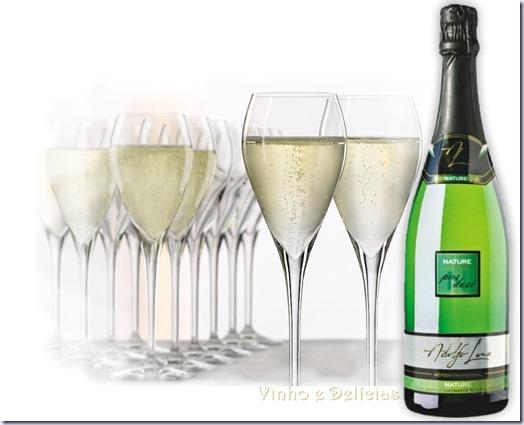 adolfo-lona-nature-vinho-e-delicias