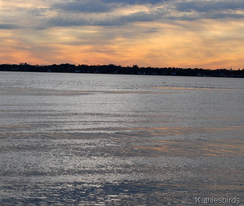 12-2-11 The mouth of the Merrimack River