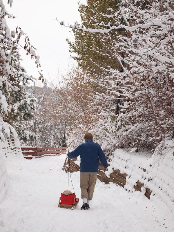 snowwonderland