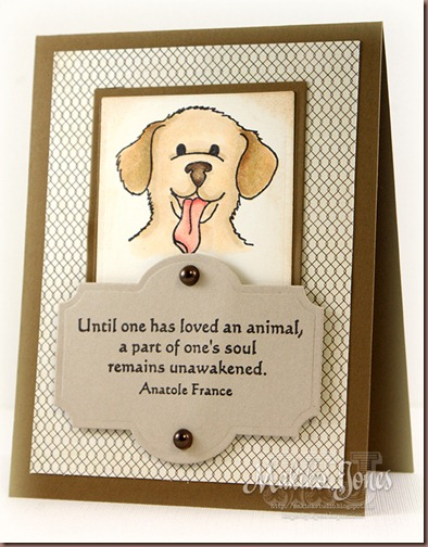 I_Loved_Animals_1