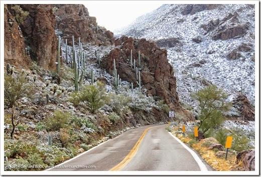 150101_TucsonMtPark_0091