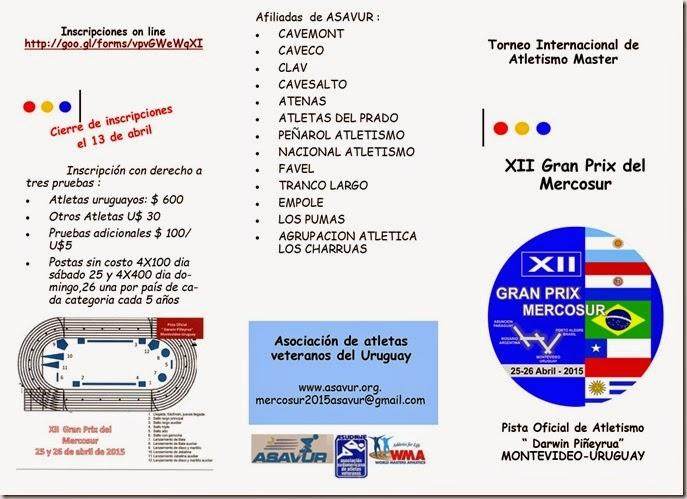 XII Gran Prix Del Mercosur -Informaciones generales