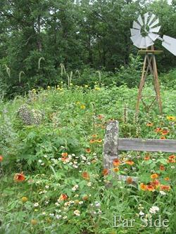 July Gardens
