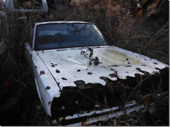 japan-graveyard-old-cars-35