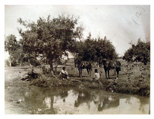 Grupo de gauchos sentados al borde de una laguna, by Francisco Ayerza [Colección Witcomb, Archivo General de la Nación]