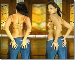 Anushka-Shetty ass