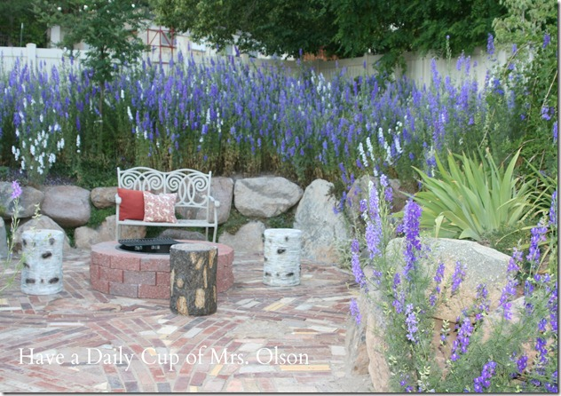 Larkspur in firepit