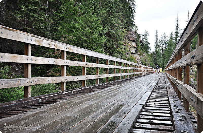 Kettle-Valley-Railway-Trestle-(1)