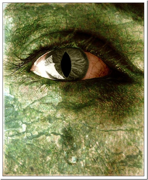 hulk (67)