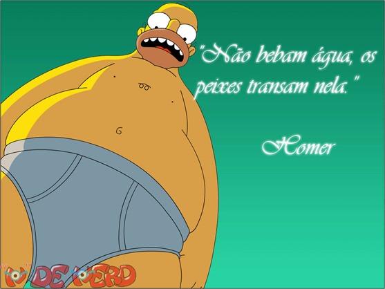 Frases Homer (1)
