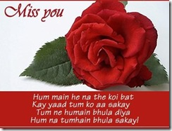 miss_you_nice_quotes_to_share_love_quotes