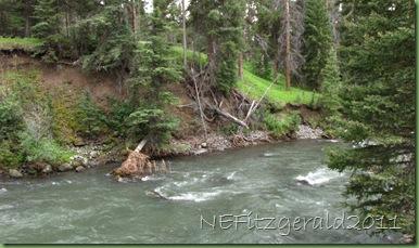 IMG_8229Stream Erosion ExposingMt MazamaAsh