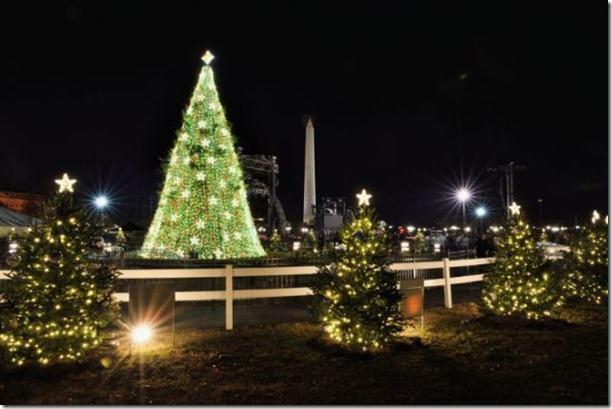 best-christmas-lights-houses-14