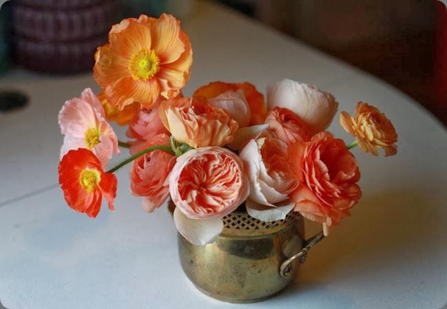 1010214_723326034374546_1261785799_n flower afternoon