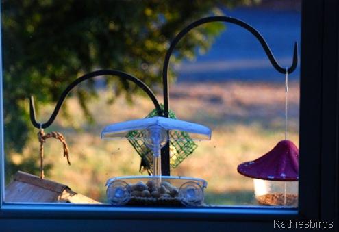 3. feeders-kab