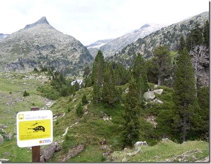 Pirineos_(Julio-2012)_ (172)