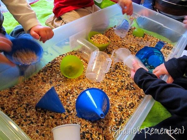 birdseed sensory bin
