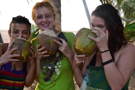 Voluntar in Africa: nuci de cocos in Togo
