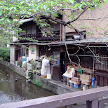the backyard of a kyoto house in Kyoto, Kyoto, Japan