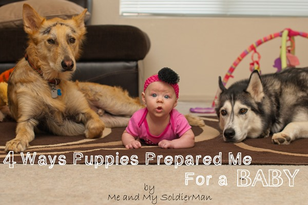 Me and My SoldierMan 4 ways puppies prepared me for a baby