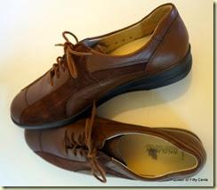 brown Waldlaufers