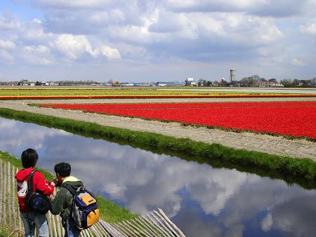 Visit Netherlands