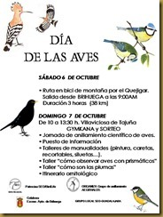 dia mundial de las aves 04