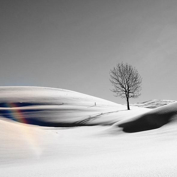 winter 21