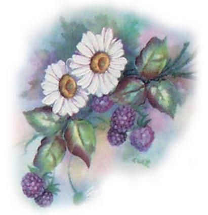 daisy_berry-700465