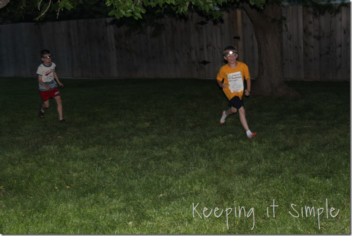 backyard games (28)