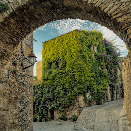 The arch in Peretallada by Liam Coburn Dunne - Buildings & Architecture Other Exteriors ( nikon 24-70, cobblestones, arch, peretallada, blue, nikon d800, street, medievil, 5-bracketed shot, architecture, ivy )