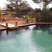 piscine bois modern pool 30.jpg